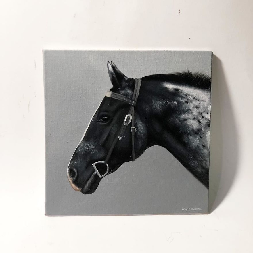 365 Horse Portraits In 365 Days