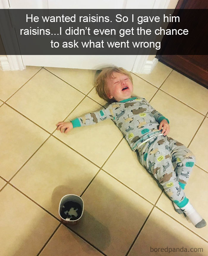 He Wanted Raisins. So I Gave Him Raisins... I Didn't Even Get The Chance To Ask What Went Wrong