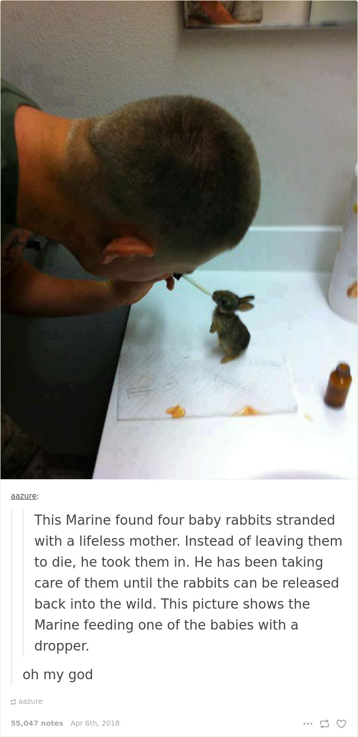 Good Guy Marine