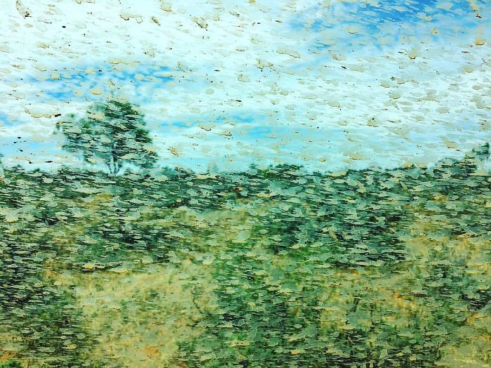 Mud Spatters On The Car Window Created An Accidental Monet On My Friend's Outback Road Trip