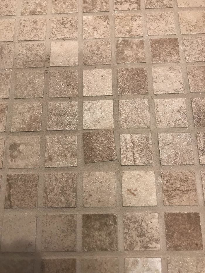 Saw This On The Bathroom Floor Of A Model Home