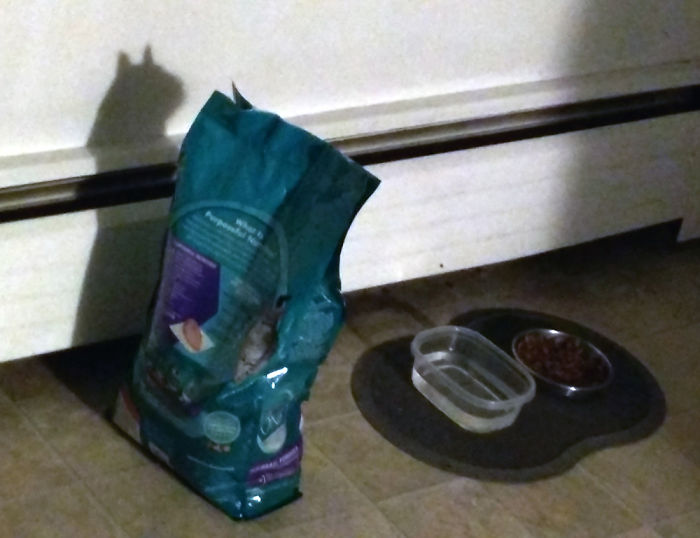 This Cat Food Bag's Shadow Looks Like A Cat