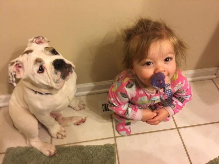 Mi hija y el cachorro se pelean a ver quien se calienta el culo en la ventilación. Hoy ganó mi hija
