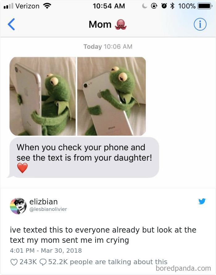 Wholesome Mom