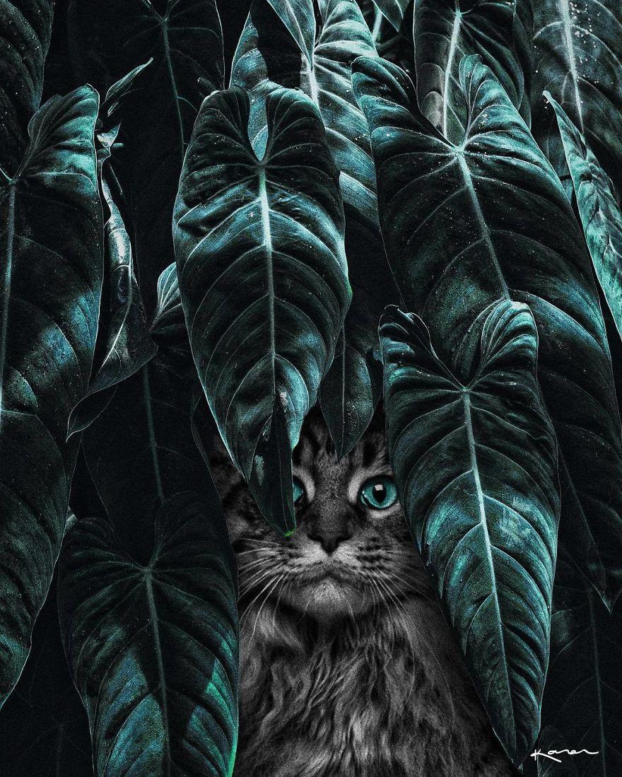 Surreal-Images-Digital-Art-Karencantuq