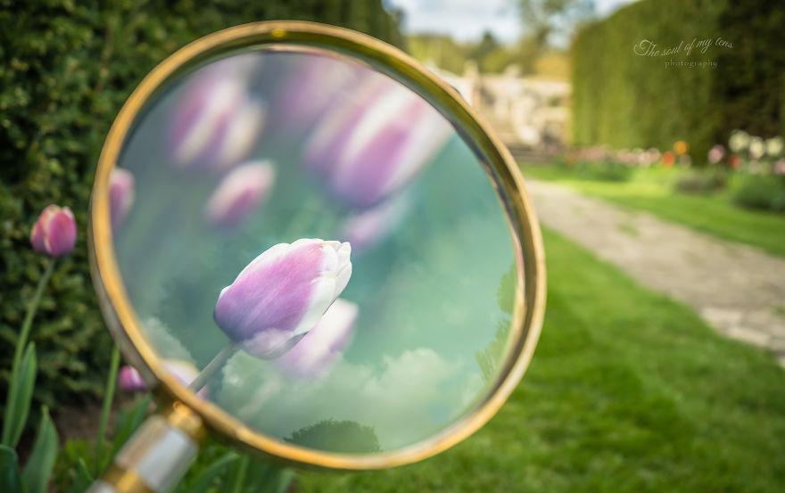 Весенний калейдоскоп