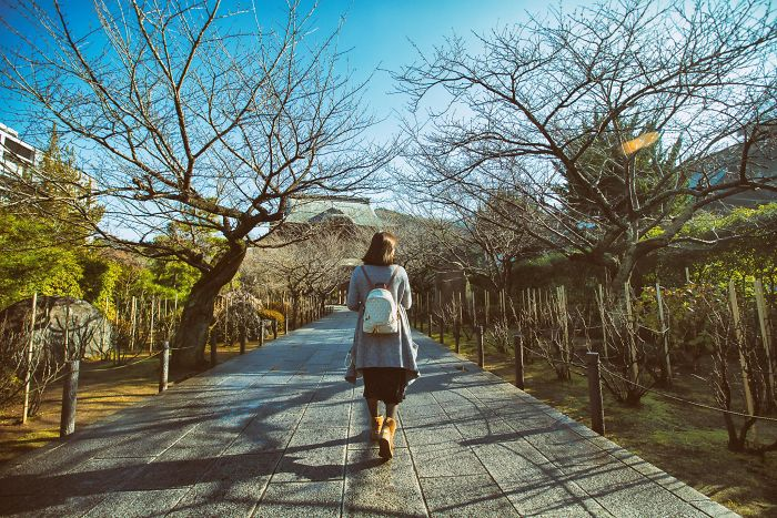 The No-Face Tourist In Japan