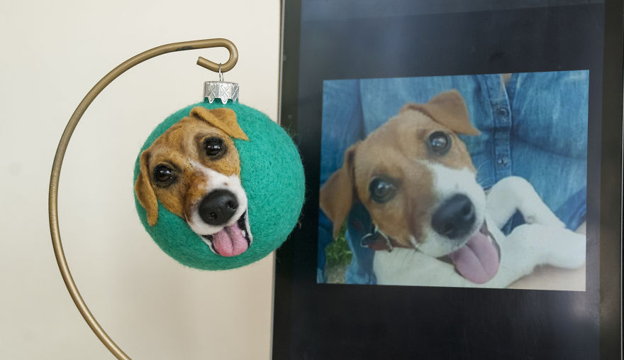 Live 3d Portraits Of Pets