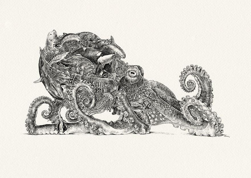 Octopus / Oceanic