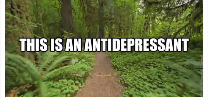 antidepressant-nature-medicine-reaction-45