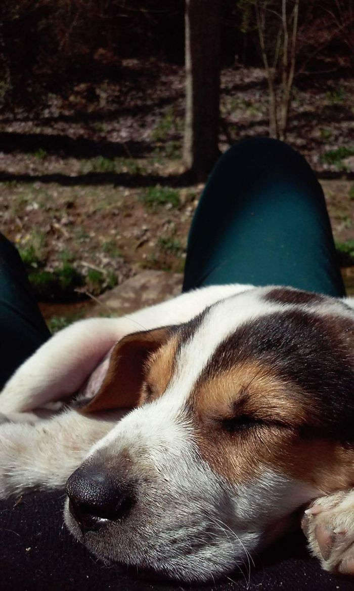 Rorik Taking A Nap On My Belly In The Forest! 3 Months Old.