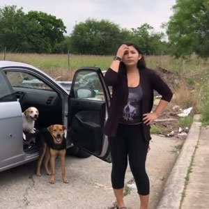 This Woman Was Caught Red-Handed While Dumping Her 4 Dogs, And Got What She Deserved