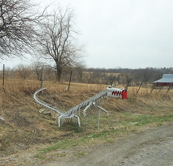 So I Was Driving Down A Country Road When Suddenly A Wild Dragon Mailbox Appears