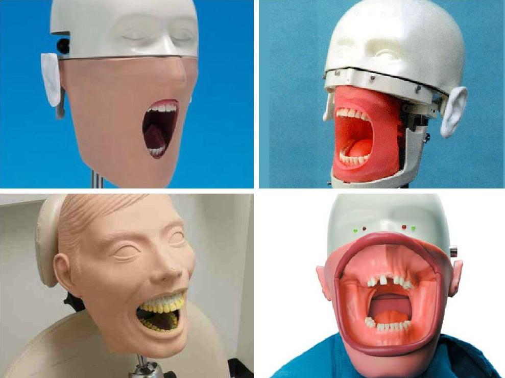 dental-mannequins.png