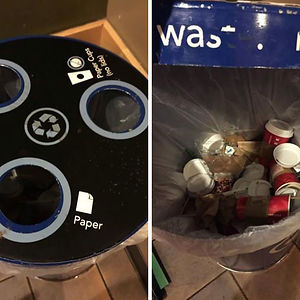 Just As I Suspected At Starbucks - At Every Place I've Worked, All Have Said They Recycle. None Do