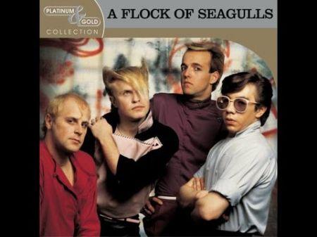 flock-of-seagulls-5ac36a1b7a9ba.jpg