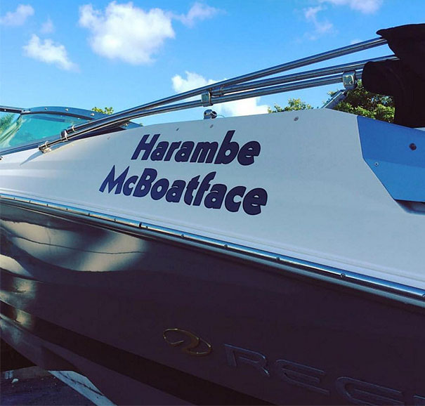 Boat Naming For The Win