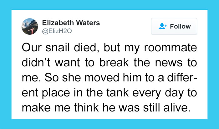 20+ Weirdest Roommates That Are Impossible Not To Laugh At… Or Live With