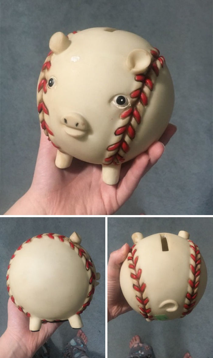 Pig That Was Created In God's Blind Spot Located And Brought To Its Forever Home In Kalamazoo, Mi