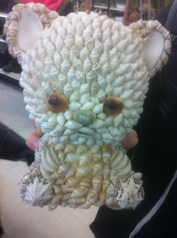 Seashell Bear... Absolutely Hexed Item