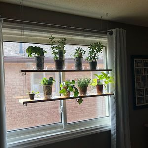 Hanging Shelves My Husband Made For Our Plants And Herbs! Made With Just Wood And Cables!