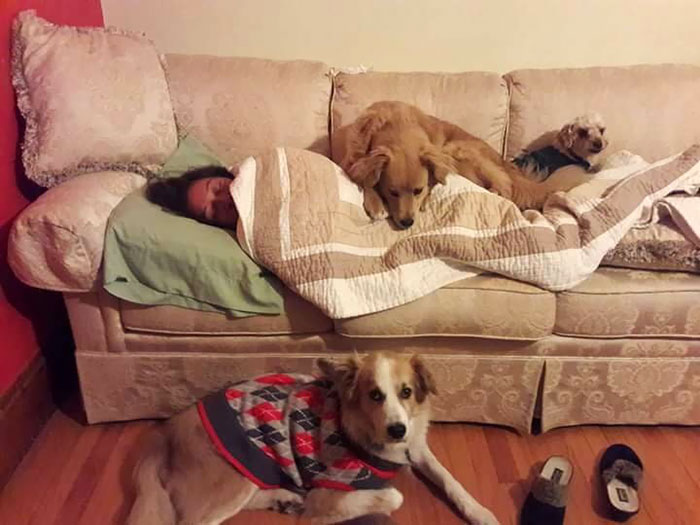 My Dogs Wouldn't Leave My Mom's Side When She Was Sick. They Were Protecting The Weakest Member Of Their Pack And Making Sure She Stayed Warm