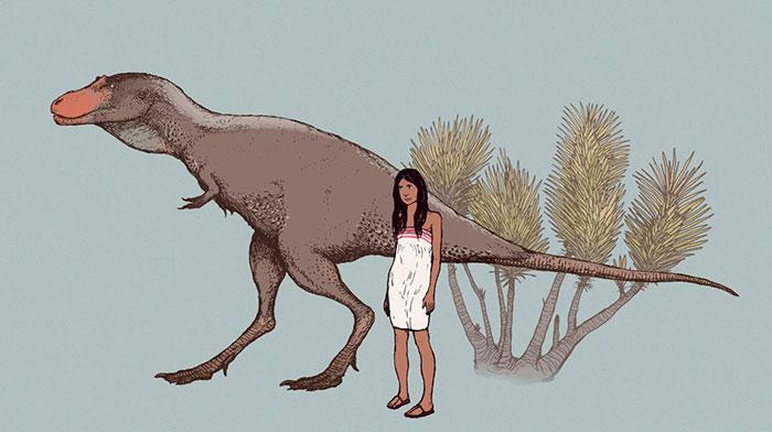 "Albertosaurus, The Original ""Terror Bird"""