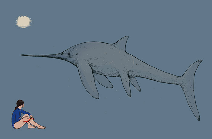 The Sword-Beaked Ichthyosaur Eurhinosaurus Has Been Typecast As A Slim, Sleek Marine Reptile, But With A Length Exceeding 6 Meters, It Must Have Been Quite A Stately Creature In Real Life