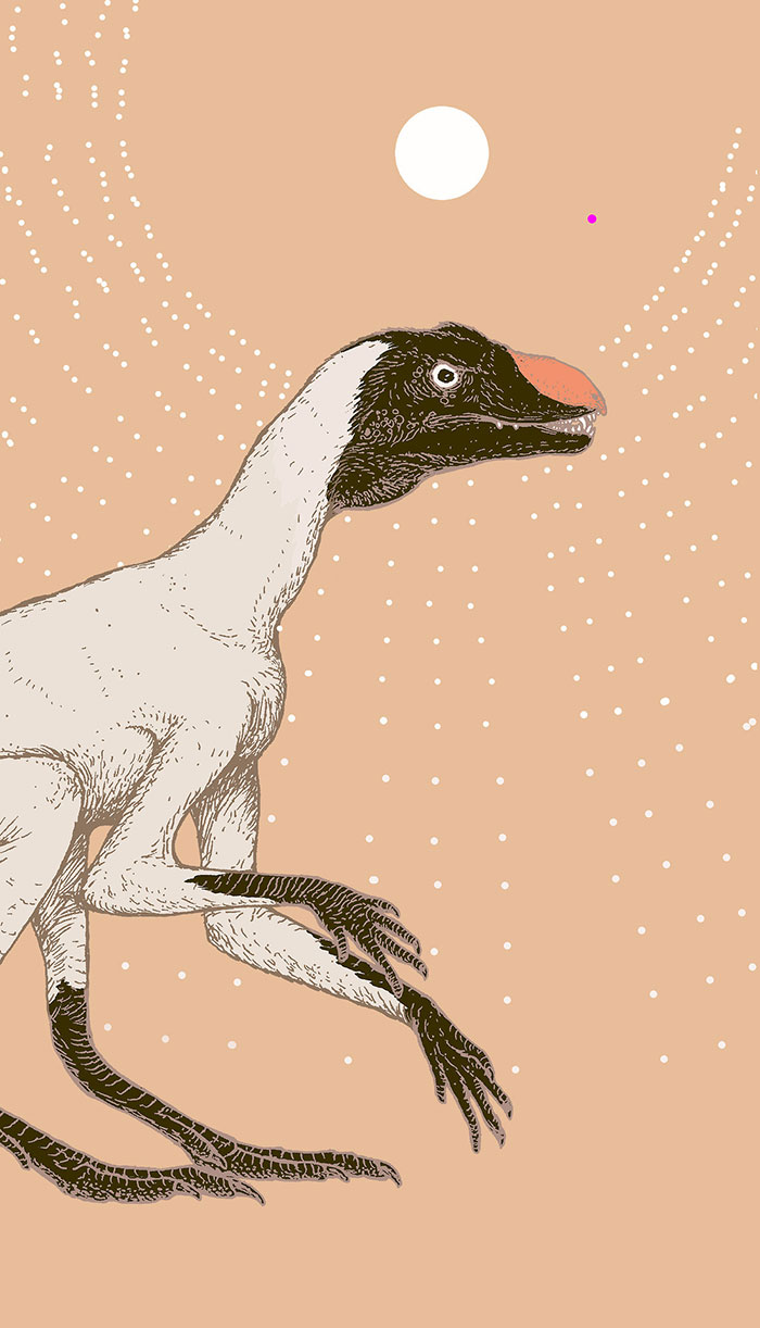 "This Small, Climbing, Fuzzy And Heterodont (Differently-Toothed) Animal As The Ultimate Ancestor Of All Dinosaurs, ""Dinosauromorphs"" And Pterosaurs"