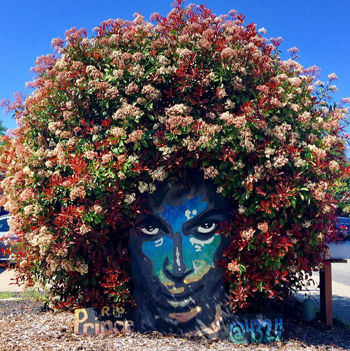 Prince Mural Suddenly Grows Magnificent Flowery Crown And It's The Most Beautiful Tribute