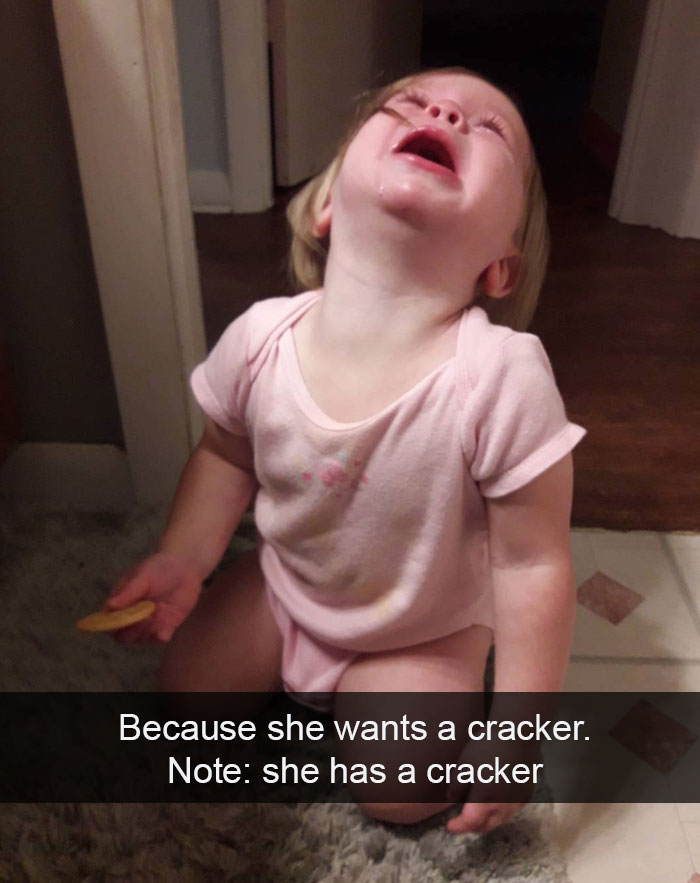 Because She Wants A Cracker. Note: She Has A Cracker