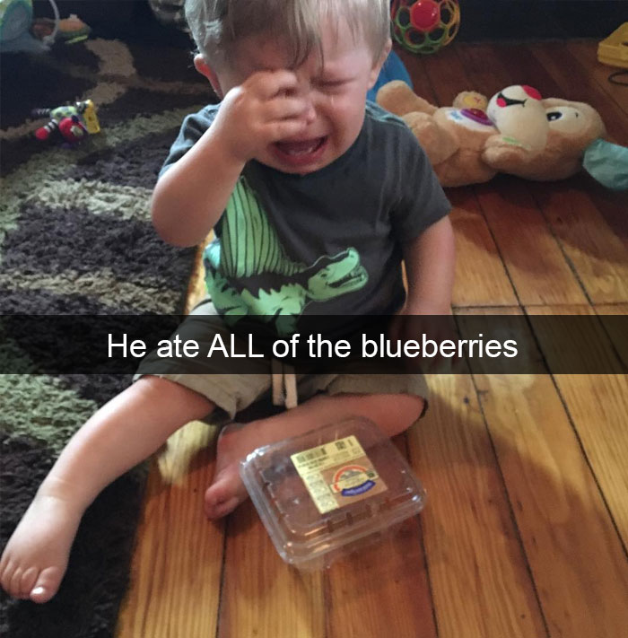 He Ate All Of The Blueberries