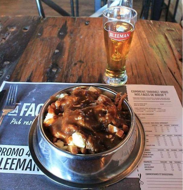 A Poutine In A Dog Bowl... I Think They're Just Humiliating Us At This Point