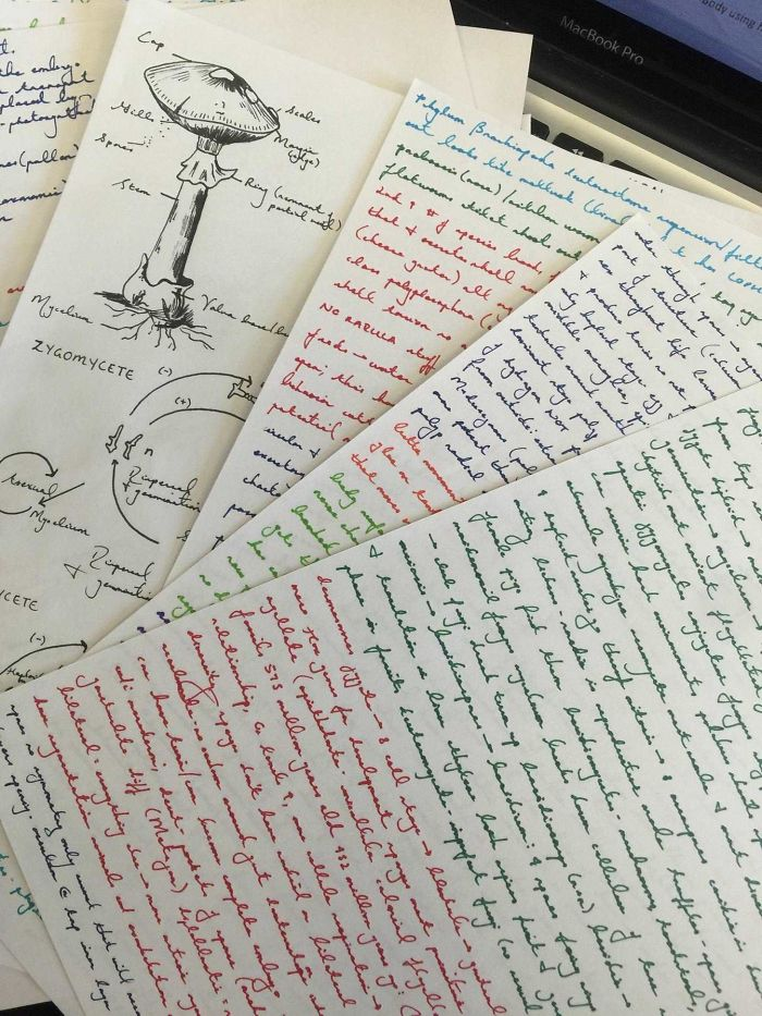 My Friend's Beautiful Bio Notes
