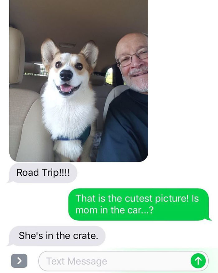 Not Sure What's Cuter, My Dog Or The Excitement My Parents Have When They Dogsit Him