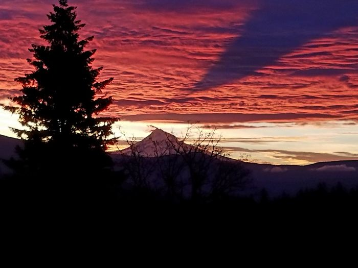 Mt. Hood Casting A Shadow On The Clouds This Morning