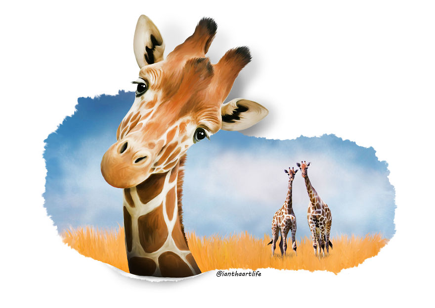 9 Illustrations Of Animals With Funny Expressions