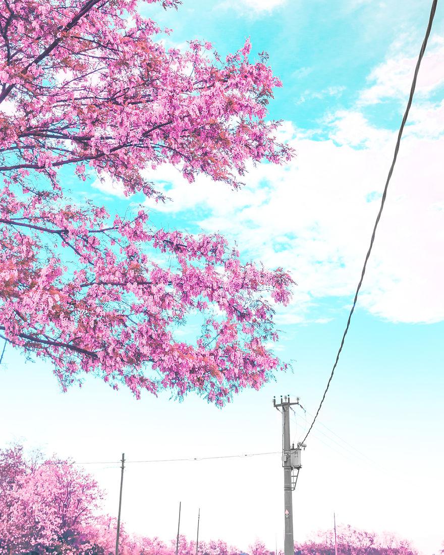 I Shoot Photos Inspired By Japanese Anime