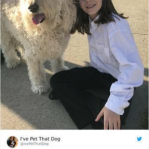 9-Year-Old-Boy-Gideon-Petting-Dogs-Twitter-Ivepetthatdog