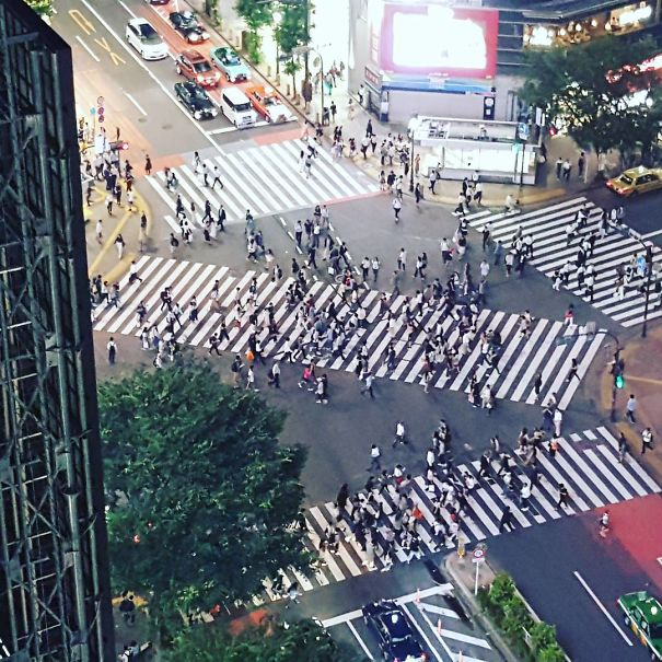 There Are Over 300 Scramble Intersections In Japan Where You Can Cross A Street Diagonally