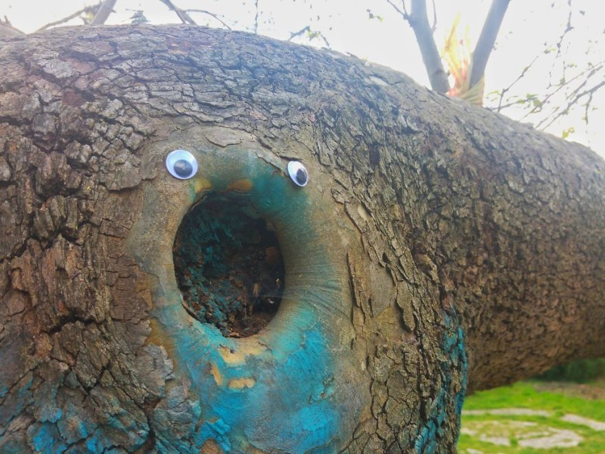 I Bring Bulgarian Streets To Life By Putting Googly Eyes On Random Objects (New Pics) 43