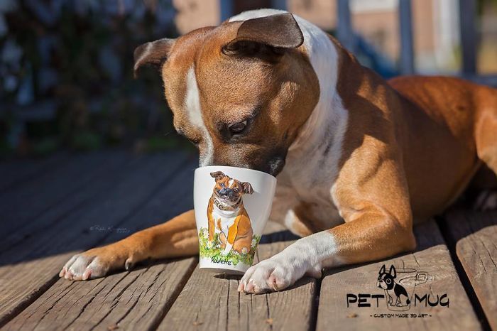 I Create 3D Sculptures Of People's Pets On Mugs Completely By Hand