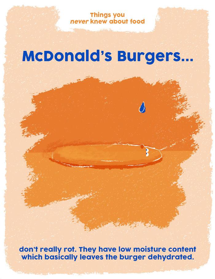 Mcdonald's Burgers Don't Actually Rot!