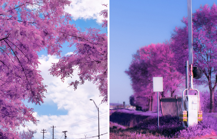 I Shoot Photos Inspired By Japanese Anime