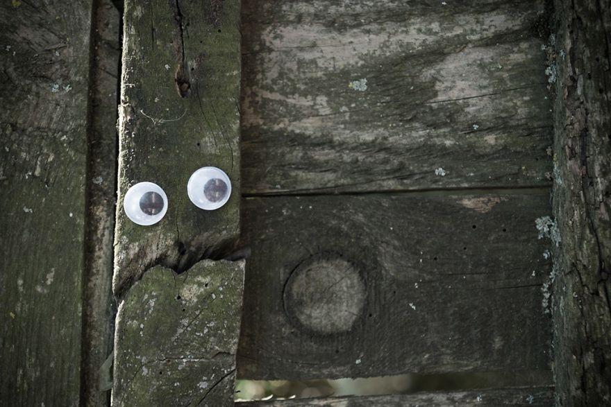 I Bring Bulgarian Streets To Life By Putting Googly Eyes On Random Objects (New Pics) 4