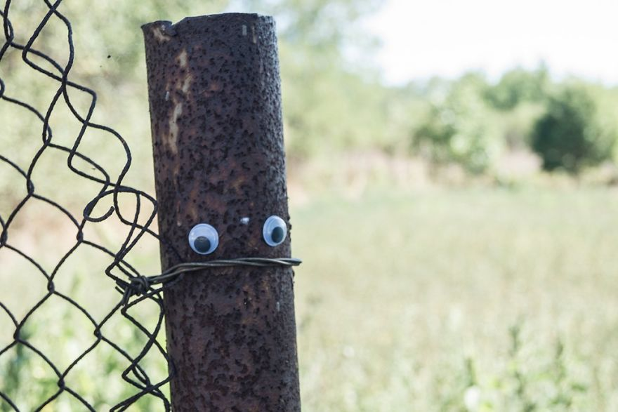 I Bring Bulgarian Streets To Life By Putting Googly Eyes On Random Objects (New Pics) 22