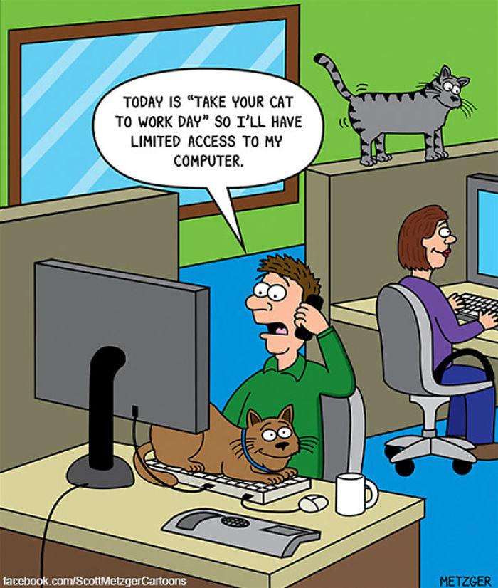 Cat Comics