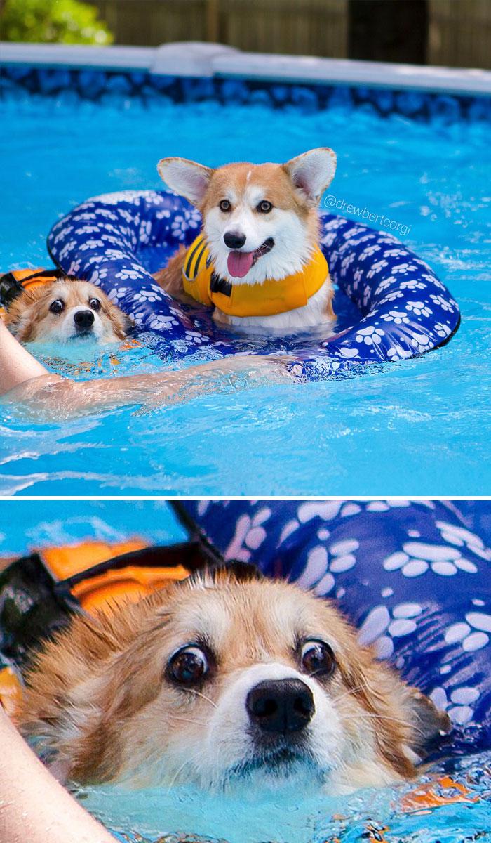 Raft Life Vs. Not Raft Life