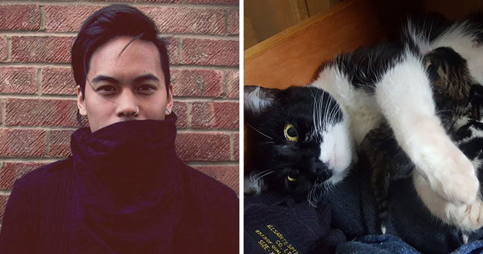 Guy Goes To His Bedroom To Grab A Sweater, Finds A Cat That Just Gave Birth Instead, And The Cat Isn't Even His