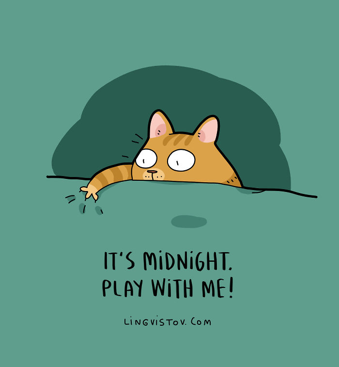 New-Fun-Cat-Illustrations-Lingvistov